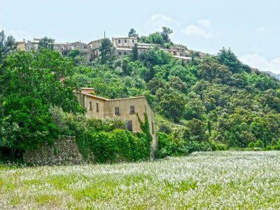 Domaine De Sainte Veziane: Cucugnan 207385 1280