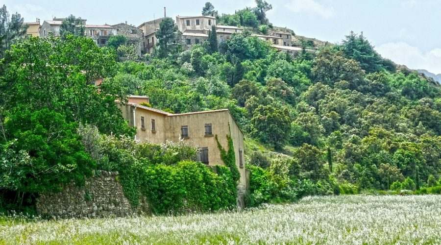Domaine De Sainte Veziane : Cucugnan 207385 1280