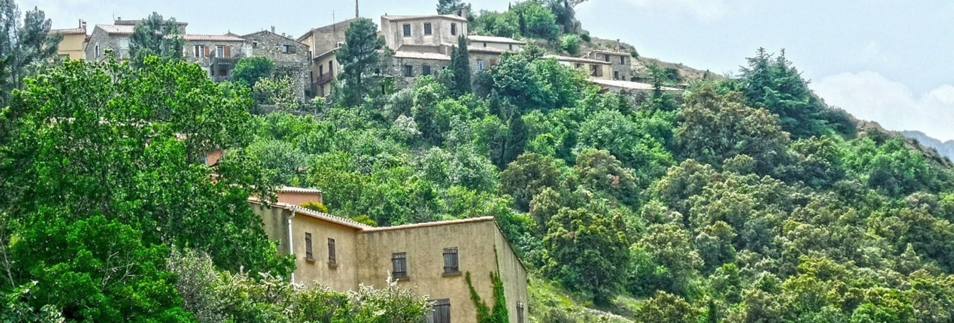 Domaine Sainte Véziane : Diaporama Cucugnan